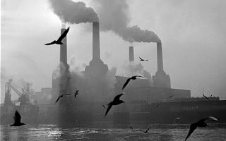 Risultati immagini per Inquinamento atmosferico e salute